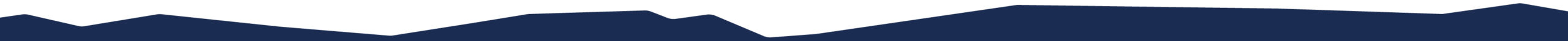 Website decoration that looks like torn paper. The color is navy.